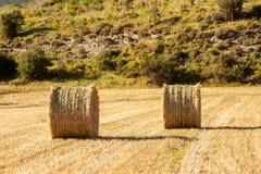 大圆的大包秸杆,捆,领域的干草堆在Th 免版税库存图片