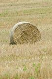 大圆的干草捆 免版税库存图片