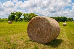 大圆的草干草捆 免版税库存图片