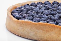 大圆的蓝草莓饼射击特写镜头 免版税库存图片