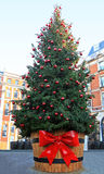 大圣诞树 免版税库存照片