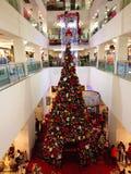 大圣诞树 库存照片