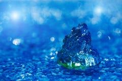 大在蓝色小卵石的扇贝玻璃海壳在水滴下 图库摄影