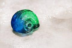 大在蓝色小卵石的扇贝玻璃海壳在水滴下 免版税图库摄影