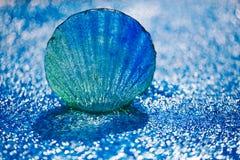 大在蓝色小卵石的扇贝玻璃海壳在水滴下 库存图片