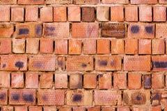 从大块的红砖墙壁 图库摄影
