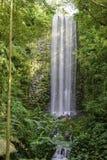 大垂直的瀑布在雨林里 库存图片