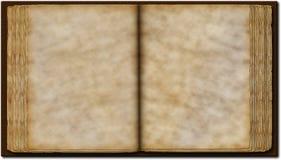 大型书本 免版税库存图片