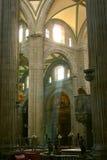 大城市大教堂内部墨西哥城 免版税库存图片