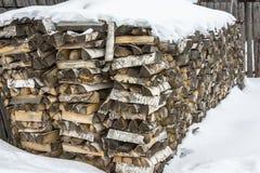 大堆桦树木头 库存照片
