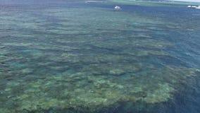 大堡礁澳大利亚的看法从直升机的 股票录像
