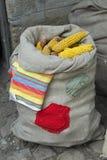 大大袋玉米棒子 库存照片