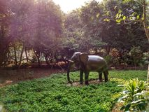 大大象 免版税库存图片