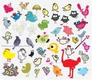 大套不同的逗人喜爱的鸟。 免版税库存图片
