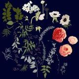 大套花、莓果和叶子 图库摄影