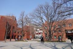 大学在韩国 库存图片