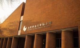 大学干燥标本集 免版税库存图片