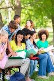 大学生学习 免版税库存照片