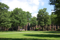 大学耶鲁 库存图片