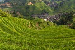 大寨村庄和周围的龙胜米大阳台的美丽的景色在广西省在中国 免版税库存图片