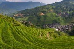 大寨村庄和周围的龙胜米大阳台的美丽的景色在广西省在中国 免版税库存照片