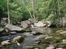 大小河 库存图片