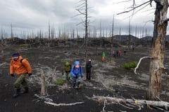 大小组游人在死的在堪察加半岛的森林死的木头走 免版税库存照片