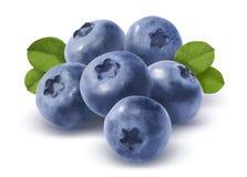 大小组在白色背景的蓝莓 免版税库存图片