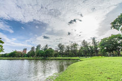 大局公园和草在城市 免版税库存图片