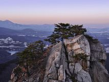 大岩石和一个森林有针叶树的在山 免版税图库摄影