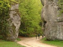 大岩石在波兰 免版税库存照片