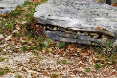 大岩石 免版税库存照片
