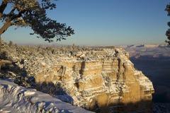 大峡谷冬天横向 免版税库存图片