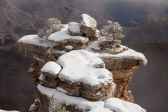 大峡谷冬天雪 免版税图库摄影