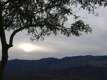 大峡谷冬天II 库存照片