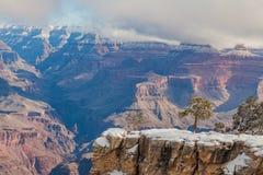 大峡谷南外缘风景在冬天 免版税库存照片