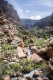 大峡谷国家公园美国14 库存照片
