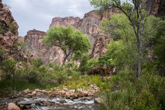 大峡谷国家公园美国16 免版税库存照片