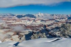 大峡谷在从南外缘的冬天 雪,在峡谷的云彩 在前景的灌木 库存照片
