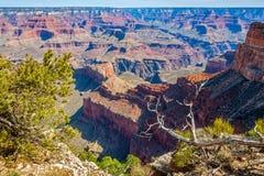 大峡谷看法从土坎的在莫哈维族点 库存图片