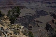 大峡谷纹理和颜色 免版税图库摄影