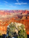 大峡谷美国 库存照片