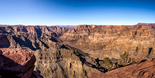大峡谷西部外缘和科罗拉多河-亚利桑那,美国全景  免版税库存图片