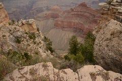 大峡谷透视 库存图片