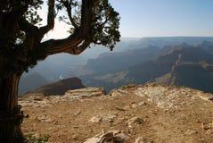 大峡谷风景 图库摄影