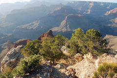 大峡谷风景 免版税库存图片