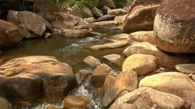大布朗冰砾的堆集作用由河的在公园 股票视频