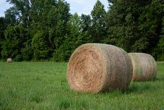 大干草在与树的领域滚动在背景中 图库摄影