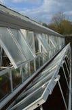 大庭院温室和玻璃钓钟形女帽 库存图片