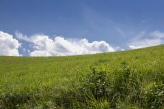 大开放领域和清楚的天空 免版税库存照片